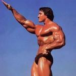 男性の理想体型について・・・どっち派?